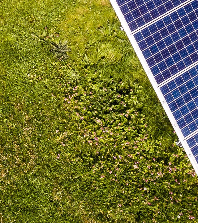 Seventh part of solar panels in meadow