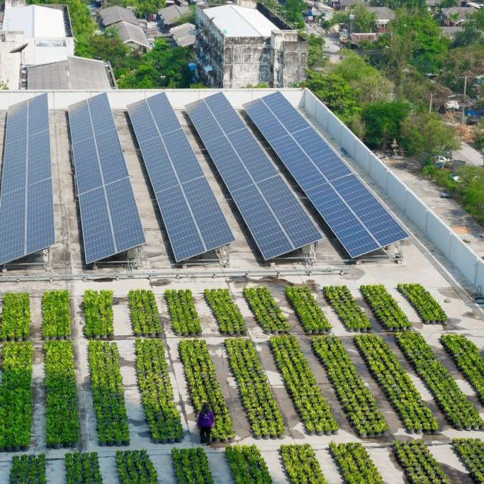 Solar and green rooftop combination